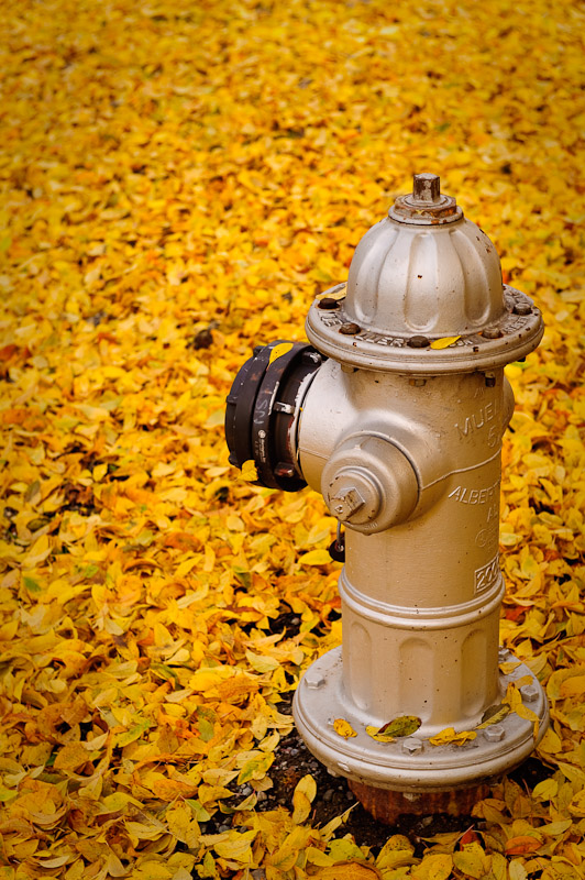 Natural Color and Unnatural Hydrant